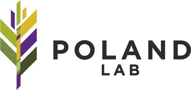 Poland Lab Logo